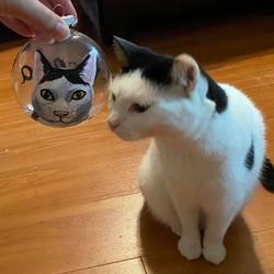 cat holiday ornament Custom Pet Portrait Samm Wehman Art