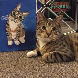 Cat Custom Pet Portrait Samm Wehman Art