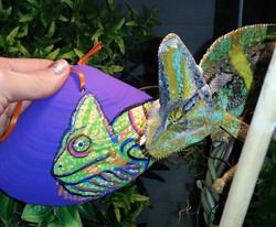 Veiled chameleon sea shell holiday ornament Custom Pet Portrait Samm Wehman Art