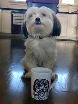 Shih Tzu Coffee Mug Custom Pet Portrait Samm Wehman Art