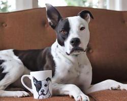Pitbull Mug Custom Pet Portrait Samm Wehman Art