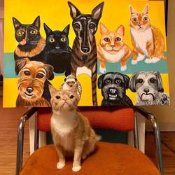 Smush Custom Pet Portrait Samm Wehman Art