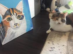 Fluffy calico cat painting Custom Pet Portrait Samm Wehman Art
