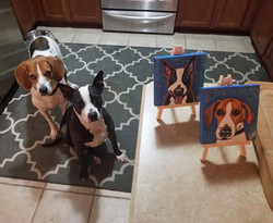 Custom Pet Portrait Samm Wehman Art Beagle pitbull rescue dogs