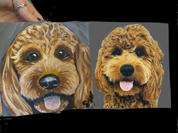 Golden Doodle Custom Pet Portrait Samm Wehman Art