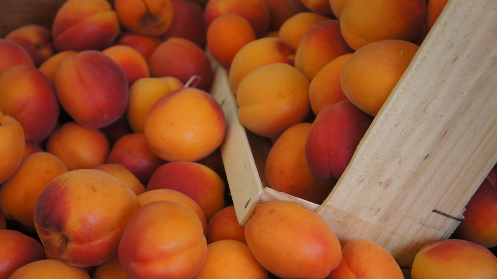 Apricot Riesling