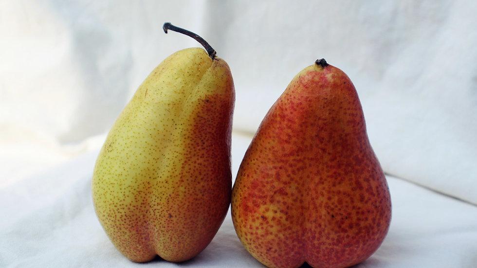 Pear Riesling
