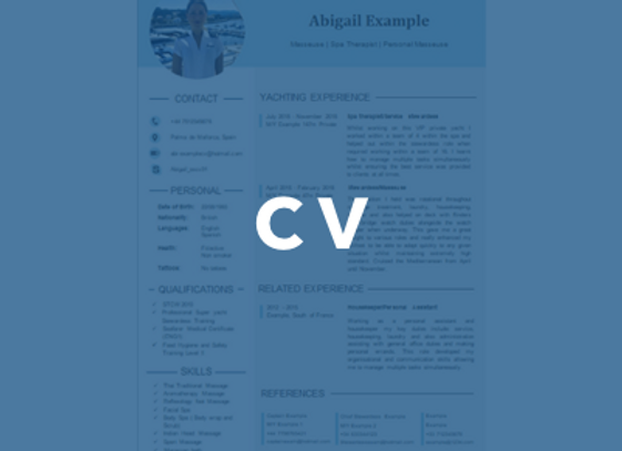 Silver Package (Professional CV)