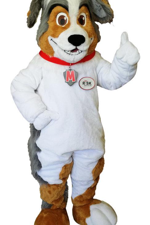 Murphy McSafety Dog