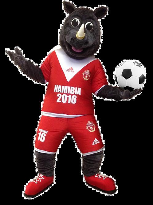 Namibia Soccer