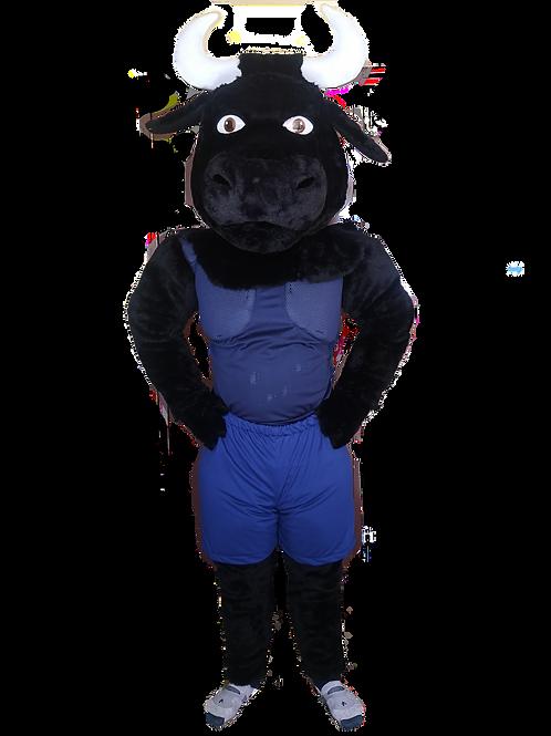 Blue Bulls Rugby