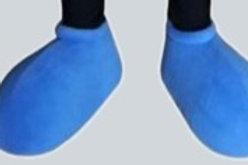 Standard Shoe