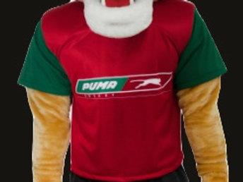 Branded Mascot Shirt