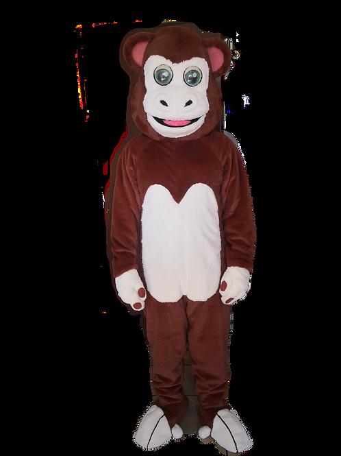Hotline Monkey