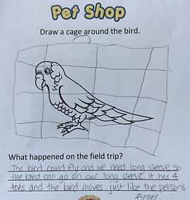 Kindergarten Prep and Beyond Marketing 7