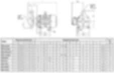 Screenshot_2019-05-13 DLG - Bombas Mark(