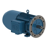 motorfreio-capacitor-erg.jpg