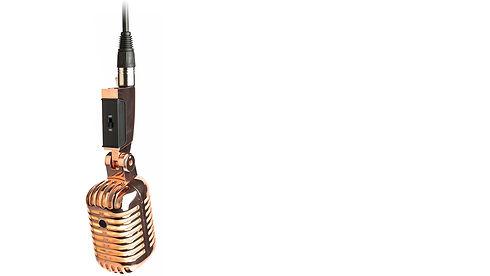mic sec 1.jpg