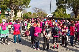 Avignonnaise_0390S.jpg