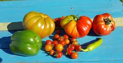 14 Tomatoes
