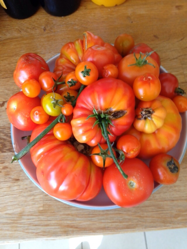 20 Tomatoes