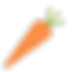 iconfinder_carrot-vegetable-spring-food_