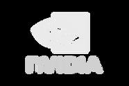 Nvidia-Logo_edited.png