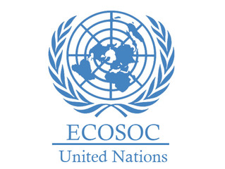SPECIAL CONSULATATIVE STATUS IN THE ECOSOC OF THE UNITED NATIONS