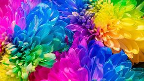 jpeg flowers.jpg