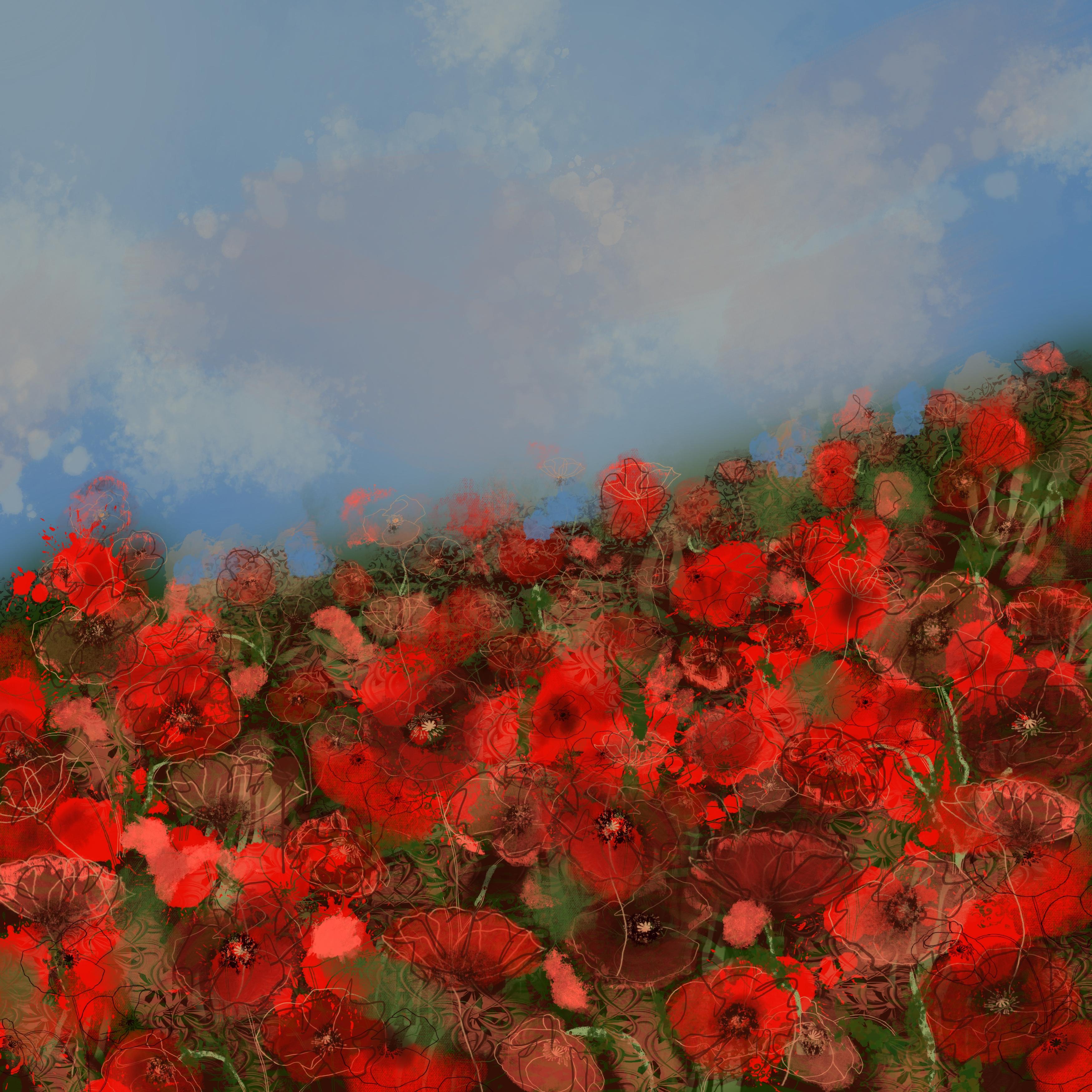 Fielding Poppies