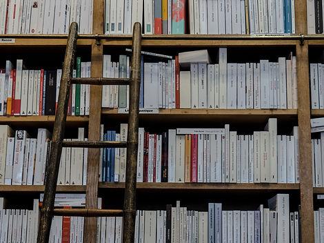 bookshop_Manolo Franco from Pixabay.jpg