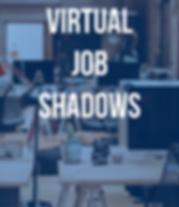 Virtual JSI_.png
