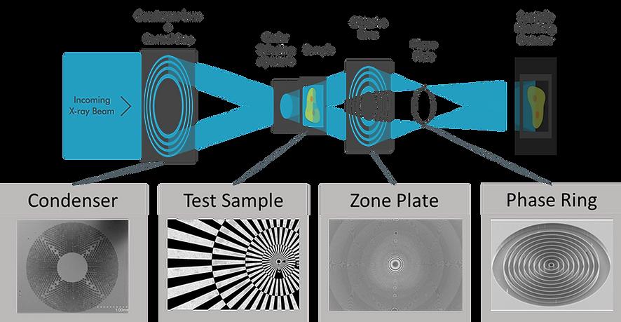 zernicke phase contrast schematic