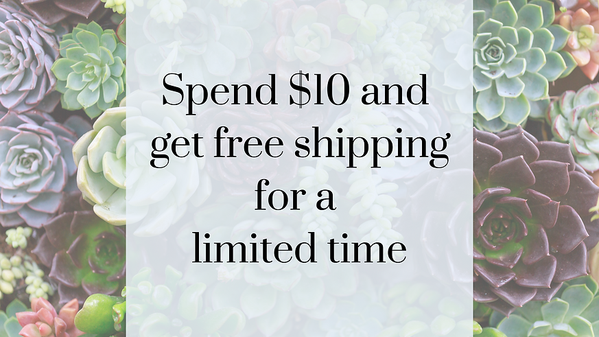 Free Shipping on orders over $10.png
