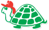 turtle_edited.png