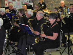 Harmony Lakeshore Band