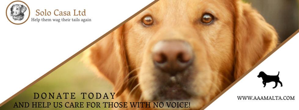 Copy of Dog Shelter Rescuer Facebook Cov