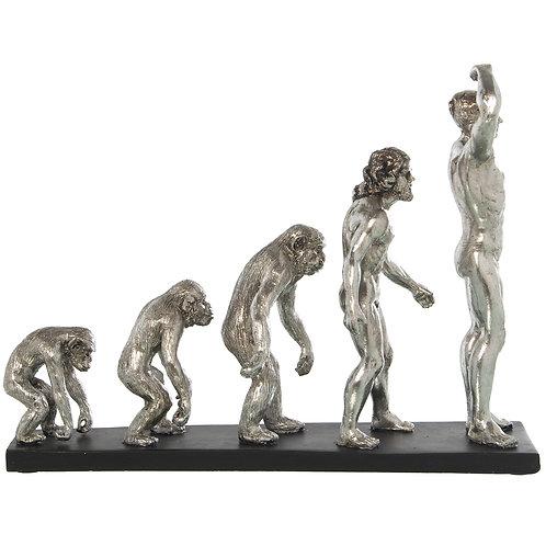 Evolution Figures