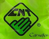 Logo-Carnation.jpg