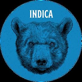 indica web circle.png