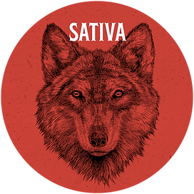 sativa web circle.png
