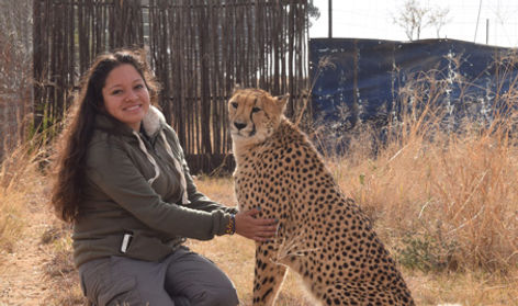 Volunteer hanging out with a cheetah