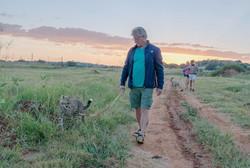 Enrichment walk