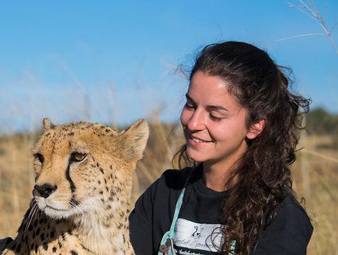 Volunteer with cheetah