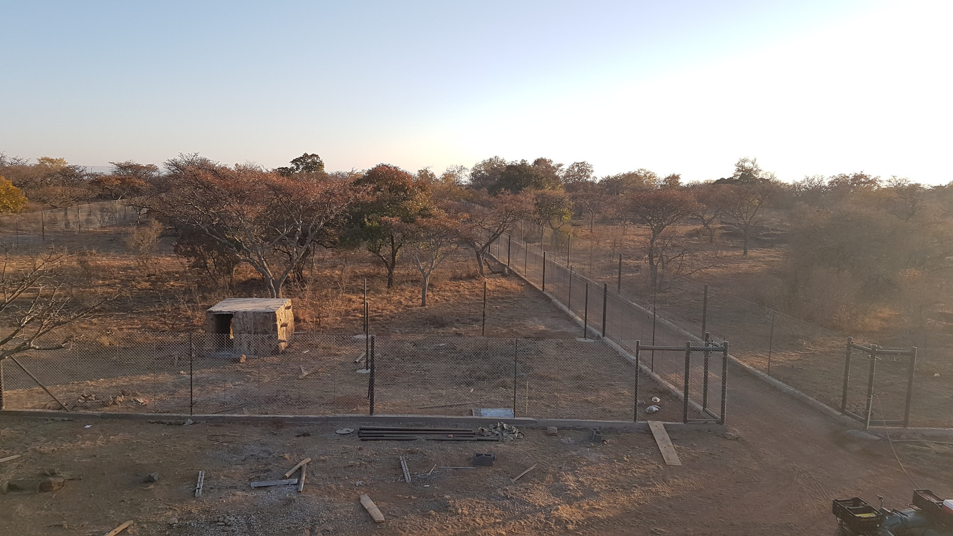 Cheetah Enclosures