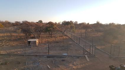 Cheetah Enclosures