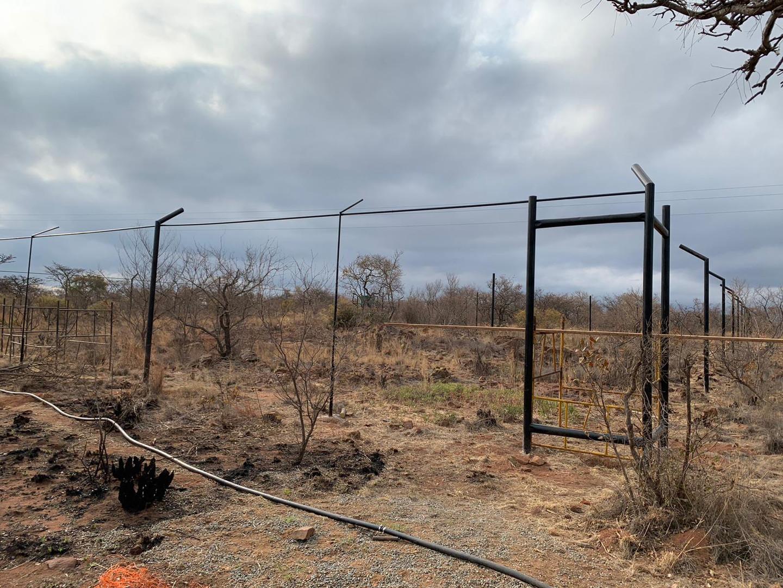 Serval Enclosures