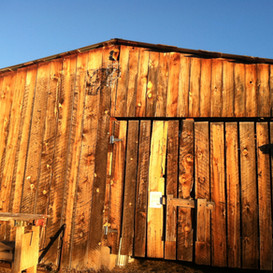 The old barn