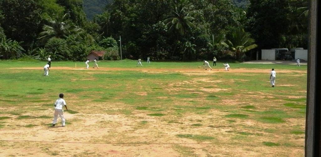 ecole cricket