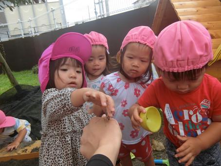 5月31日(月)曇りでも元気に遊ぶ子ども達です☆
